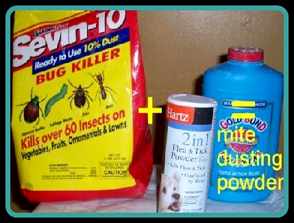 mite dusting powder